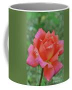 Solitude Hybrid Coffee Mug