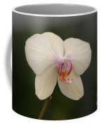 Solo Act Coffee Mug