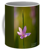 Solo Crocus Coffee Mug by Mike Reid