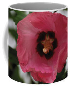 Solo Rose Of Sharon Coffee Mug