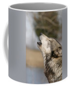 Solo Song Coffee Mug