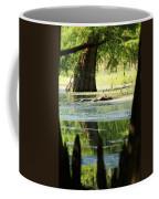 Some Turtles At Radium Springs Creek Coffee Mug