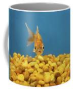 Something Fishy Coffee Mug