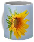 Sometimes We Feel Like This ... Coffee Mug