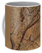 Song Sparrows Coffee Mug