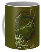 Songbird Green Coffee Mug
