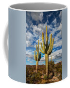 Sonoran Desert Beauty Coffee Mug