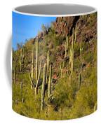 Sonoran Desert West Saguaro National Park Coffee Mug