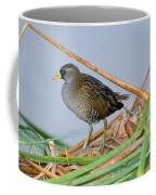 Sora Rail Coffee Mug