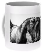 Soul Mates Coffee Mug by Toni Hopper