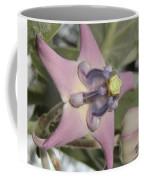 Soulful Star  Coffee Mug