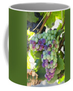 South Africa, Scenes At Constantia Coffee Mug