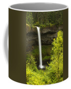 South Silver Falls 1 Coffee Mug