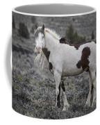 South Steens Wild Stallion Coffee Mug
