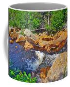 Southeast Brook Above Falls In Gros Morne Np-nl Coffee Mug