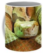 Southern Copperhead Coffee Mug