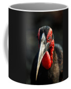 Southern Ground Hornbill Portrait Front View Coffee Mug
