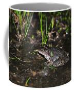 Southern Leopard Frog Coffee Mug