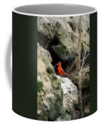 Southern Red Bird By The Flint River Coffee Mug