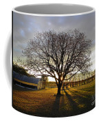 Southern Sunrise  Coffee Mug