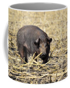 Sow In The Field Coffee Mug