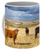 Spanish Bulls Coffee Mug