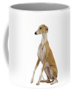 Spanish Galgo Coffee Mug