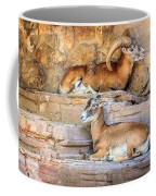 Spanish Ibex Coffee Mug