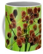 Sparganium Coffee Mug