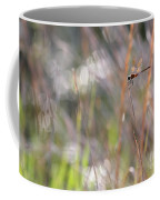 Sparkling Morning Sunshine With Dragonfly Coffee Mug