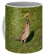 Sparrow 1 Coffee Mug