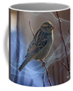 Sparrow In A Weave Coffee Mug