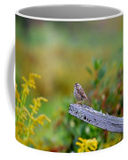 Sparrow On Board Coffee Mug