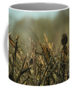 Sparrow Watch  Coffee Mug