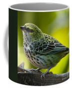 Speckled Tanager - Tangara Guttata Coffee Mug