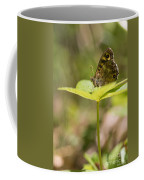 Speckled Wood Butterfly Coffee Mug