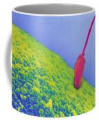 Sperm Penetrating Egg Coffee Mug