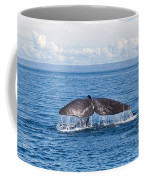 Sperm Whale Tail  Physeter Catodon Coffee Mug