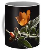 Sphaeralcea Ambigua Coffee Mug