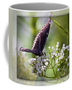 Spicebrush Swallowtail Butterfly Coffee Mug