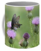 Spicebush Swallowtail Butterfly On Bull Thistle Wildflowers Coffee Mug