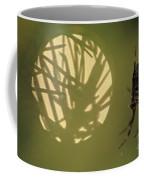 Spider And Sunlight Coffee Mug