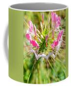 Spider Flower Coffee Mug