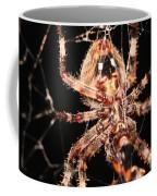 Spider - Hairy Coffee Mug