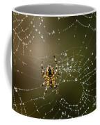 Spider In Web 5 Coffee Mug