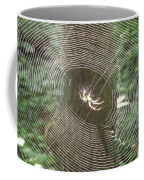 Spider Light Coffee Mug