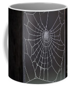 Spider Web With Frost Coffee Mug