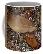 Spiderweb And Raindrops Coffee Mug