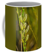 Spiky Green Plant Coffee Mug