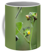 Spiky Green Wild Flowers Coffee Mug
